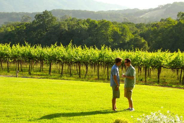 Bekannt als homofreundliches Sommerziel: Sonoma County (Foto: Out in the Vineyard)
